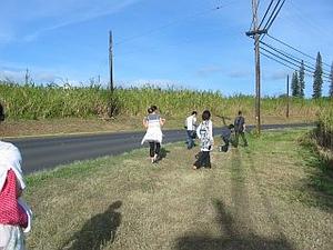 Maui02
