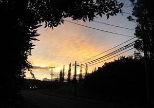 Maui03